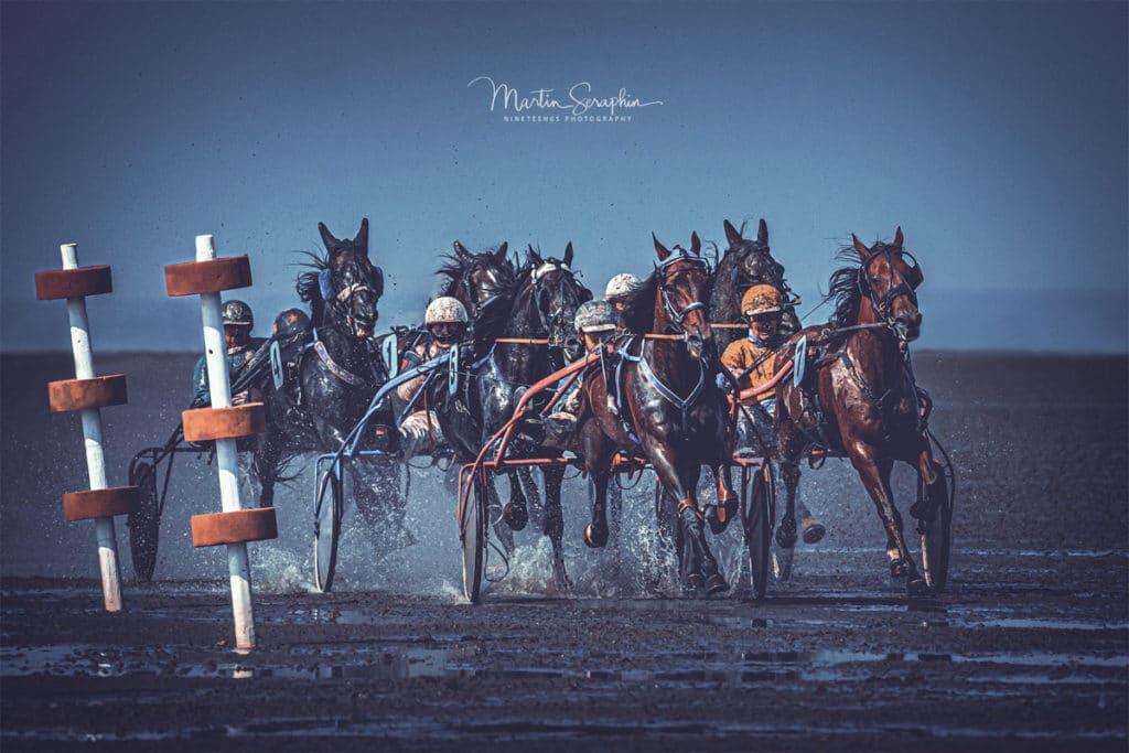 Sportfotograf Pferdesport Reitsport